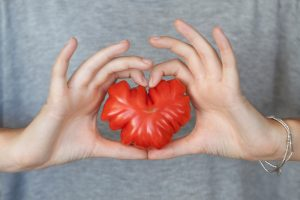 Hands hold a heart-shaped heirloom tomato.